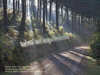 SALMO_del_SEGUIMIENTO.pps